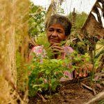 El 92,3 % de las mujeres que se autorreconocen como campesinas saben leer y escribir.Cortesía - PNUD Colombia