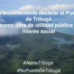 Puerto de Tribugá - fundación ACUA